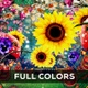 Full Colors - VideoHive Item for Sale