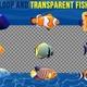 Cartoon Fish Pack Loop - VideoHive Item for Sale