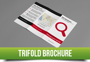 Trifold Brochure Item