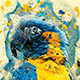 Amplify Photoshop Action - GraphicRiver Item for Sale