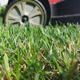 Mowing The Grass In Garden - VideoHive Item for Sale