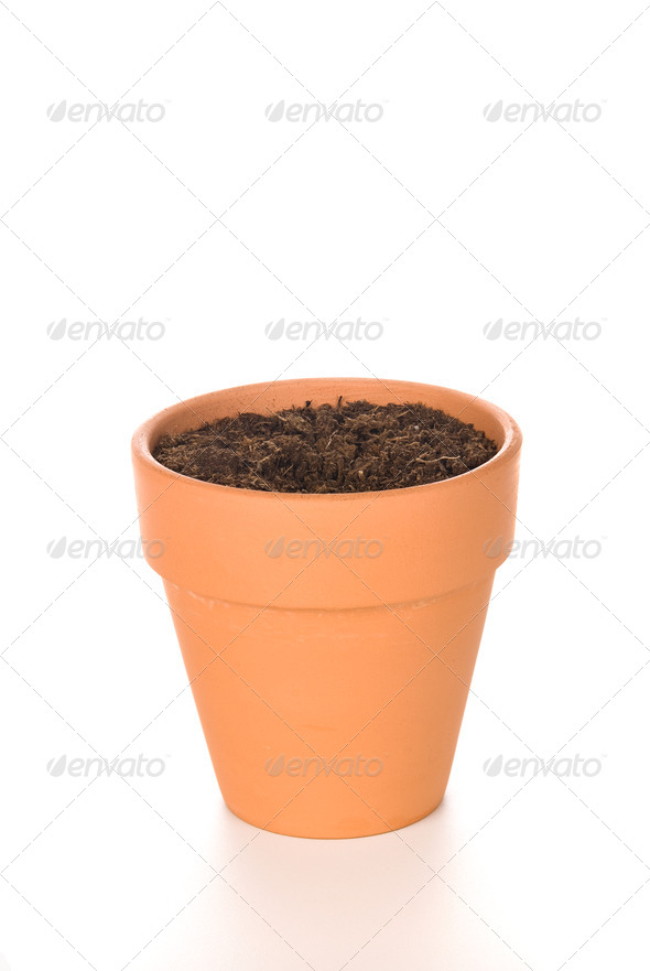 Clay Flower Pot with Soil - Stock Photo - Images