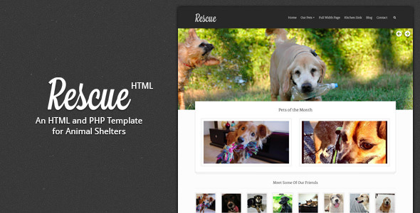 Rescue – Animal Shelter HTML Template