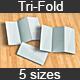 Tri-Fold Brochure Mock-Up Kit - GraphicRiver Item for Sale