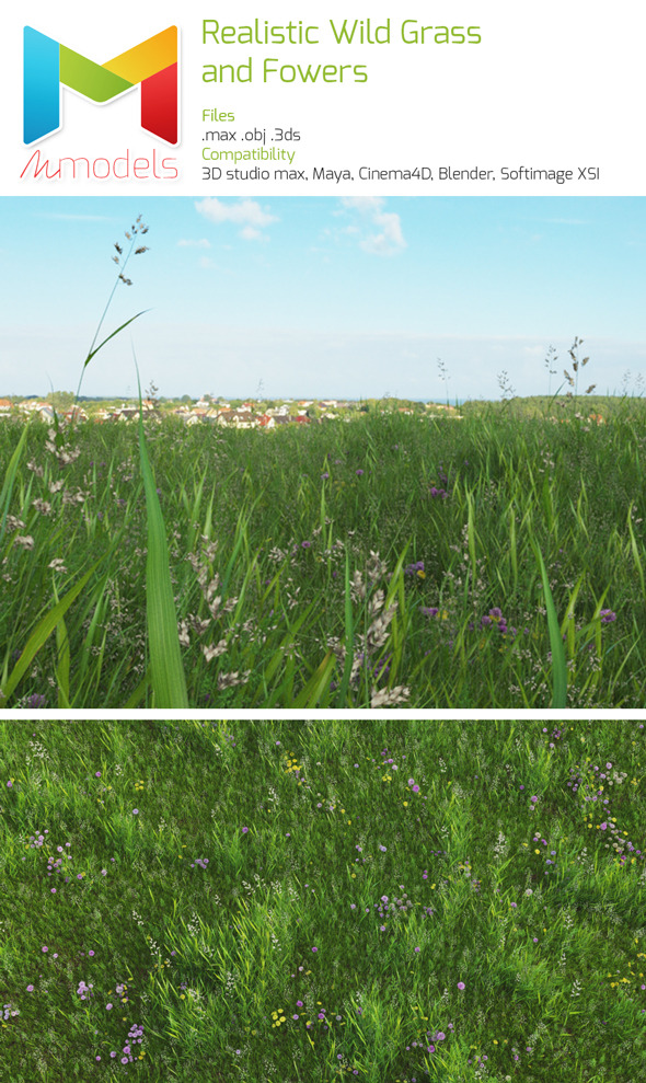 Realistic wild grass and flowers - 3DOcean Item for Sale