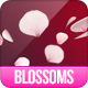 Falling Blossoms - VideoHive Item for Sale