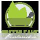Herbal Medicine Logo - GraphicRiver Item for Sale