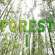 Forest pack 1 - VideoHive Item for Sale