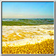 Wave Beach and Gold Sand - VideoHive Item for Sale