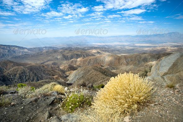 Colorful desert landscape - Stock Photo - Images