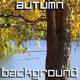 Autumn Season - VideoHive Item for Sale