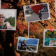 Photo Gallery on an Autumn Afternoon - VideoHive Item for Sale
