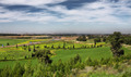 Green fields and meadows at spring time in Israel. - PhotoDune Item for Sale