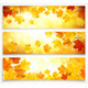 Collection of Autumn Banners - GraphicRiver Item for Sale