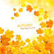 Autumn Leaf Fall Background - GraphicRiver Item for Sale