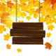 Autumn Leaves Background - GraphicRiver Item for Sale