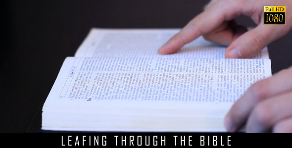 Leafing Through The Bible By FootageStock