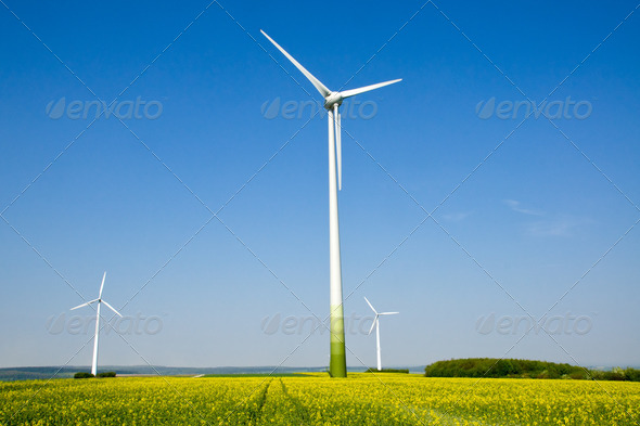 Rapeseed field and windwheels - Stock Photo - Images