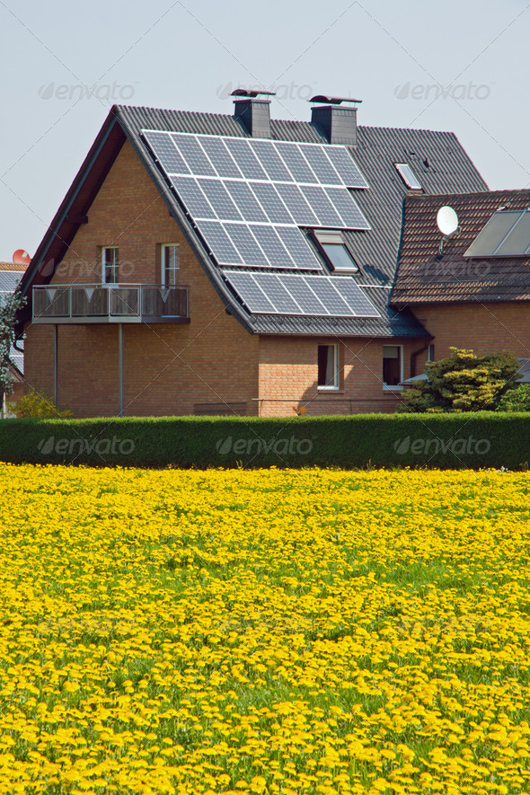 Home with solar panels and yellow dandelion - Stock Photo - Images