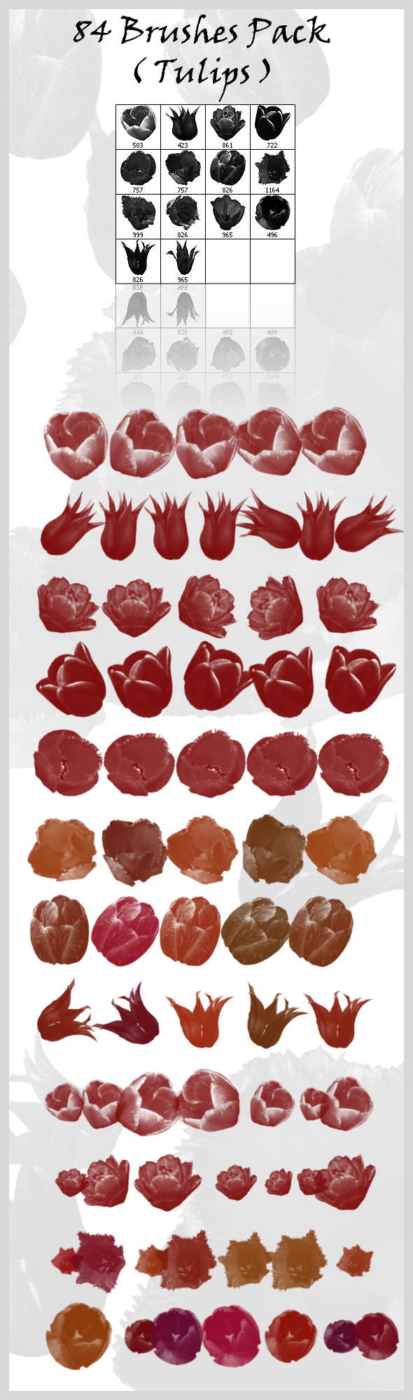 84 Brushes Pack ( Tulips ) - Flourishes Brushes