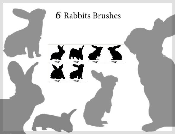 6 Rabbits Brushes (2500px) - Brushes Photoshop