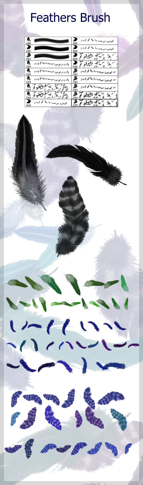 Feathers  Brushes - Brushes Photoshop