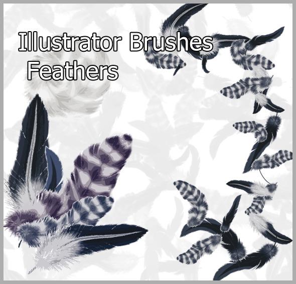 Feathers  Brushes - Brushes Illustrator