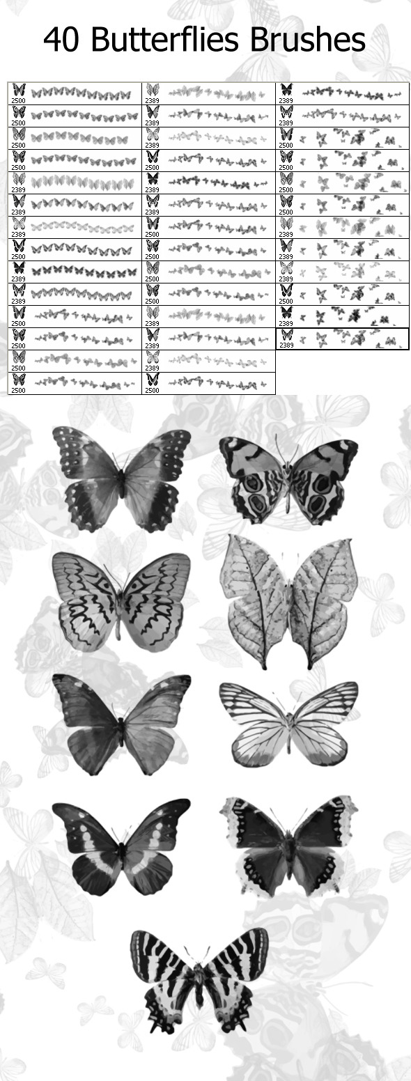 40 Butterflies Brushes (2500px)  - Flourishes Brushes