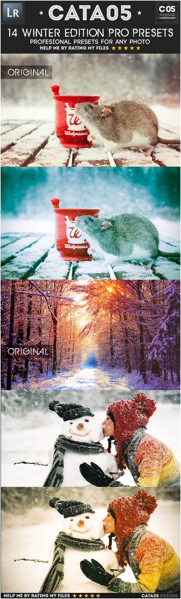14 Winter Edition Pro Presets - Portrait Lightroom Presets