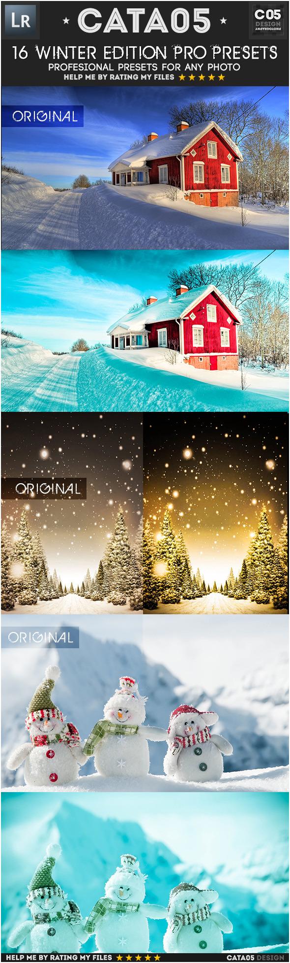 16 Winter Edition Pro Presets - Landscape Lightroom Presets