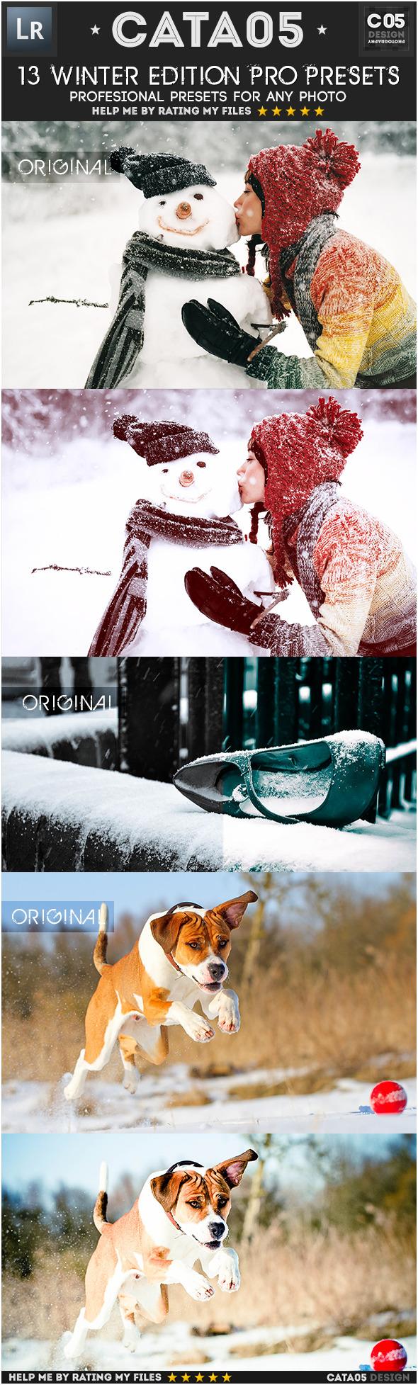 13 Winter Edition Pro Presets - Portrait Lightroom Presets