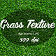 Premium Grass Texture - GraphicRiver Item for Sale