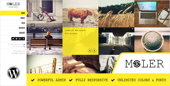 Moler – Full Screen WordPress Portfolio