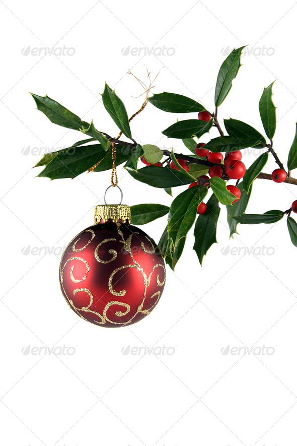 Holly and Red Ornament - Stock Photo - Images