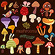Bright Different Types of Mushrooms Set in Vector - GraphicRiver Item for Sale