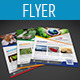 Business Flyer Template Vol-10 - GraphicRiver Item for Sale