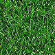 Realistic Tileable Grass - GraphicRiver Item for Sale