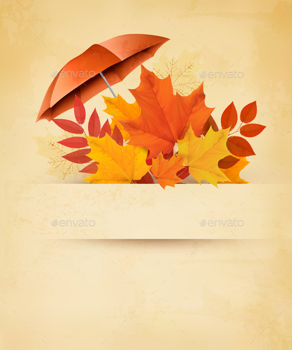 Autumn Background with Autumn Leaves  - Seasons/Holidays Conceptual