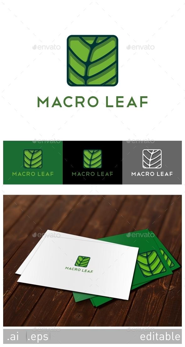 Macro Leaf Logo Template - Nature Logo Templates
