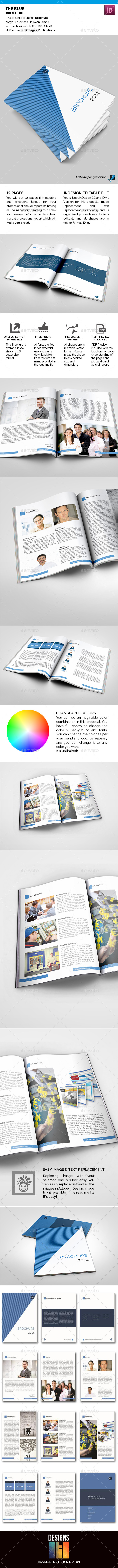 The Blue Brochure - Corporate Brochures
