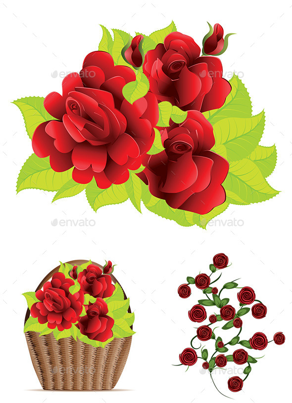Red Roses with Leaves - Flowers & Plants Nature