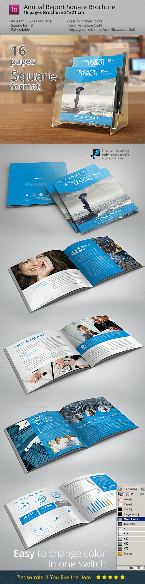 Brochure Annual Report InDesign - Informational Brochures