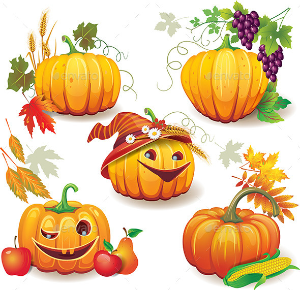 Autumn Still Life with Pumpkins - Seasons Nature
