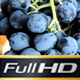 Sun with the Grapes in Vineyard  - VideoHive Item for Sale