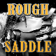 Rough Saddle