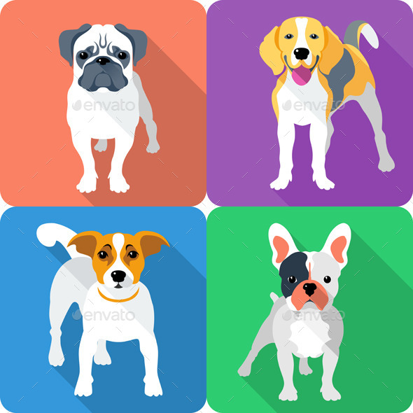 Vector Set Dog Icon Flat Design  - Animals Characters