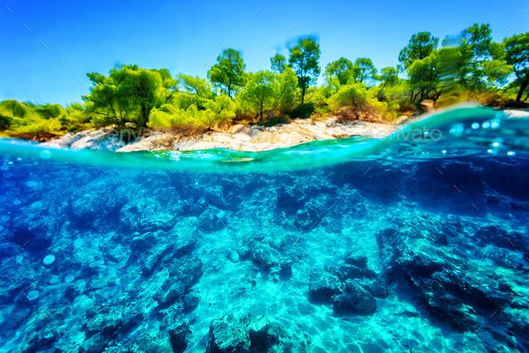 Beautiful underwater nature - Stock Photo - Images