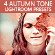 Autumn Tone - 4 Lightroom Presets - GraphicRiver Item for Sale