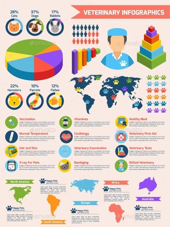 Veterinary Infographics Set - Infographics