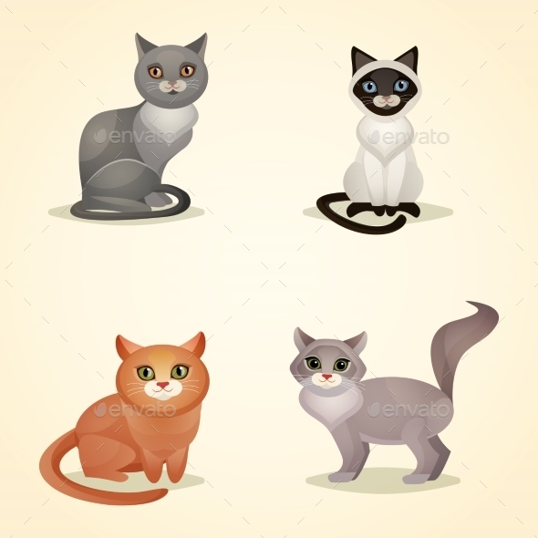 Cat Set Isolated - Animals Characters